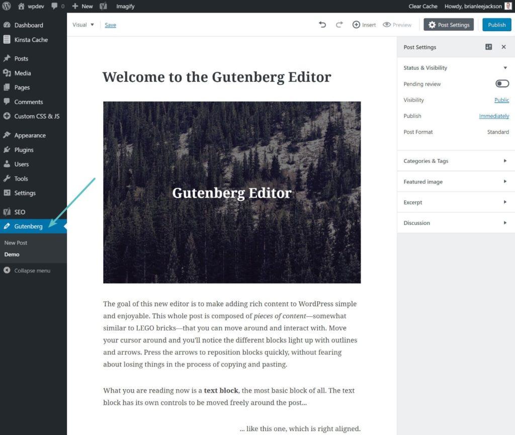 demo editor gutenberg 1024x865 - WordPress 5.0: cosa cambia con il nuovo editor Gutenberg?