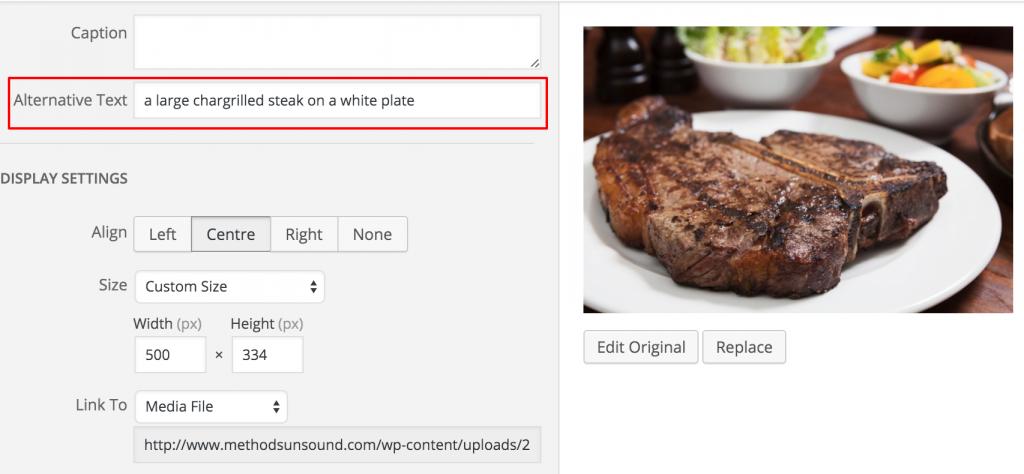 """Immagini correttamente """"etichettate"""" 1024x474 - Indicizzare i contenuti al meglio: SEO Copywriting"""